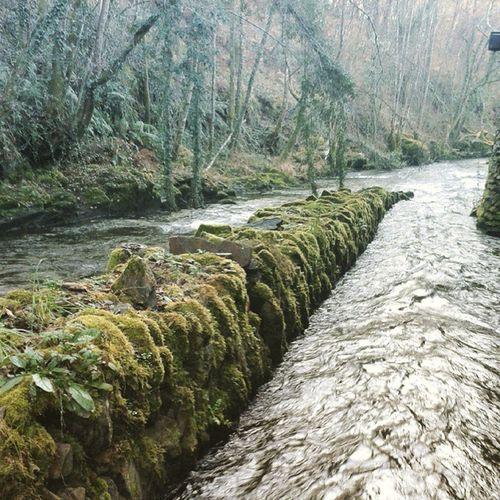 River Lugo