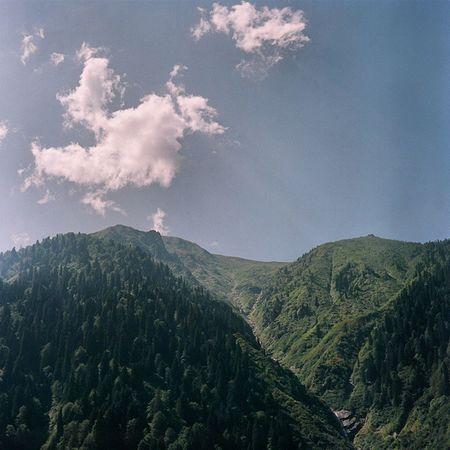 Özlemek yüzyılın hastalığı.. Mamiya Mamiyac220 Analog Analogphotography ishootfilm filmisnitdie fujifilm fujifiom400h blacksea rize ayder doga nature green clouds love heaven