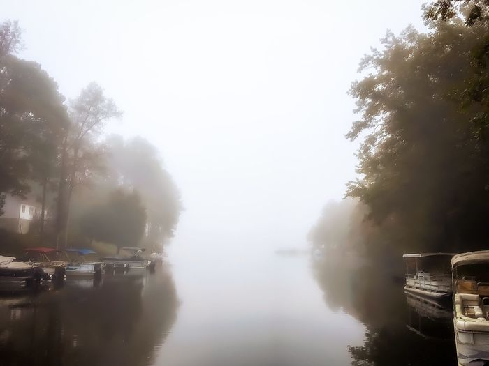 Water Fog Morning Walking Around Tranquil Scene Beauty In Nature Nature Lake Tree Reflection Outdoors Mist Scenics Tranquility Sky Textures And Surfaces Taking Photos Autumn Shapes And Forms Relaxing Quiet Moments No People