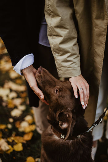Midsection of man holding dog