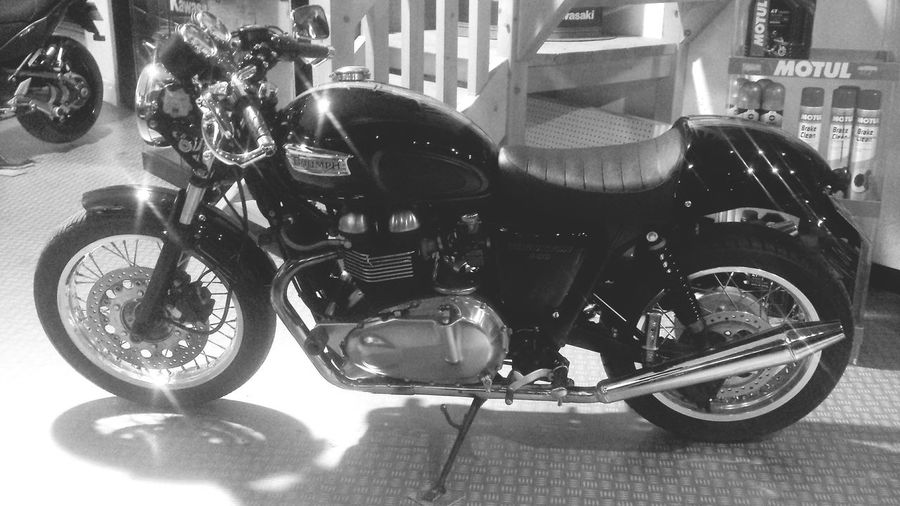Motorcycle Motorbikes Triumph Thruxton Transportation Motorcycle Mode Of Transport Stationary No People Close-up Outdoors Day