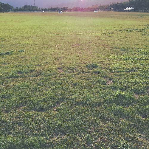 Day Field Garageimg Grass Landscape Outdoors Relaxing Moments Tranquility