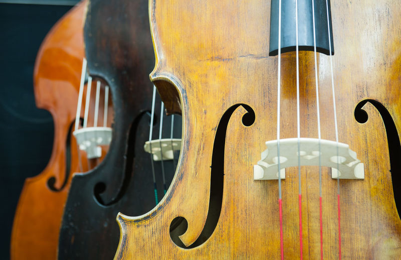 Close-Up Of Double Basses
