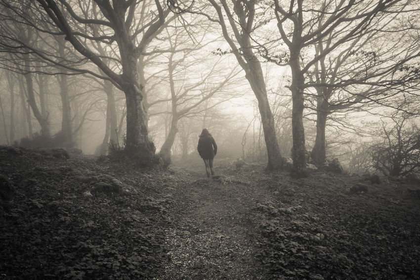 Woman lost in the dark forest Dark Fear Lost Nature Path Plants Trees Trekking Woman Beech Forest Black And White Fog Foggy Forest Italy Monte Cucco Mountain Nature One Person Pathway person Solitude Umbria Walking WoodLand