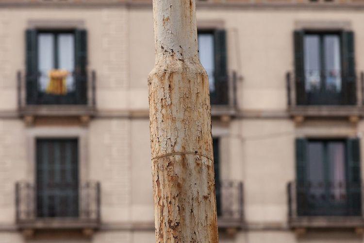 Rusty post,
