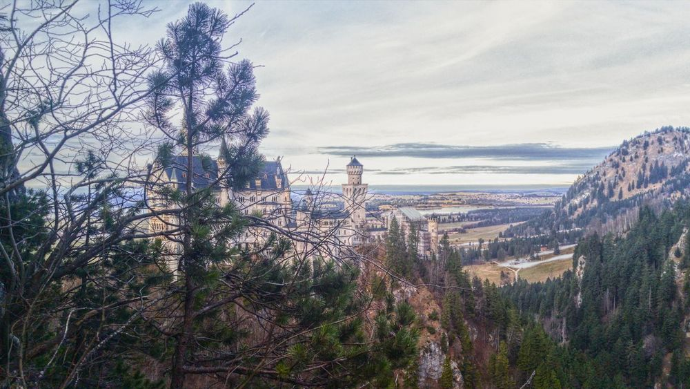 Neuschwanstein Castle, Germamy Schloss Nature Tree Beauty In Nature Sky No People Day Outdoors Tranquility Freshness Germany Neuschwanstein Hohenschwangau Hike ExploreEverything Travel Travelphotography SeeTheWorldThroughMyEyes Travel Destinations Textured