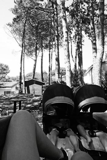 August 2016 Babies Blackandwhite Photography Break Day Girls Girlstime  Nature Nature_collection Peace And Quiet Person Personal Perspective Pic Resting See What I See Seetheworld  Sisters Sitting Outside Sleepingbaby Solitude Taking Photos Tranquil Scene Tranquility Tree Twins