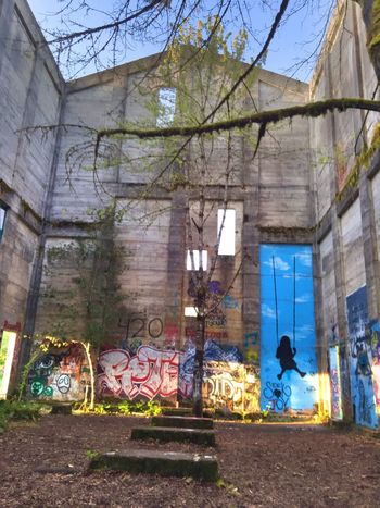 Showing Imperfection Abandoned Abandoned Buildings Rustic Scenic View Abstract Nature Atmosphere Views Telling Stories Differently Trees Nature Landscape Scenic Landscape #Nature #photography Abandoned Places Landscapes Graffiti Art Old Abandoned Mill Abandoned & Derelict Neat Places Opps! Scenics Streetart/graffiti Nature Photography