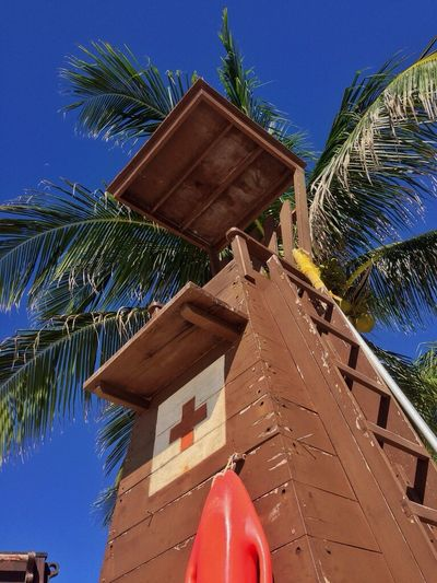Safeguard Baywatch Tower Redcross Palm Security Vacation Trip Sky