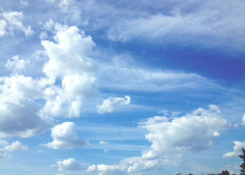 Cloud - Sky Sky Low Angle View Nature No People Beauty In Nature Day Outdoors Backgrounds Blue Sky