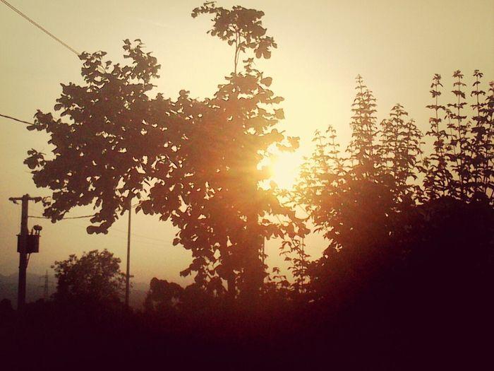 Al Tramonto. .. Pacedeisensi Pensieri ♥ Sole Cuore Amore ❤