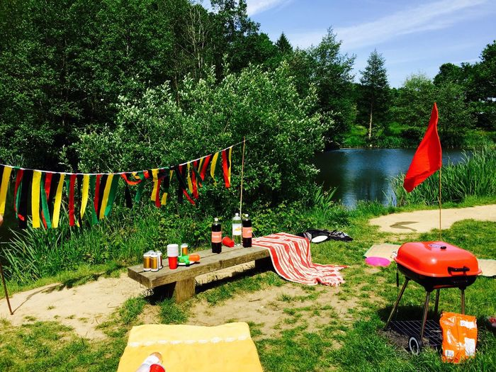 Summer BBQ Forest Water Lake Flag Nature Countryside
