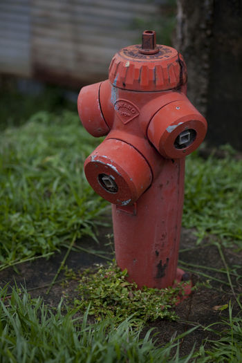Old red fire hydrant Close-up Fire Hydrant Focus On Foreground Grass No People Outdoors Red Water Dispenser