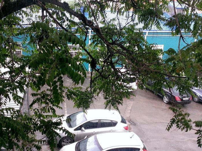 Rostov Summer Rains
