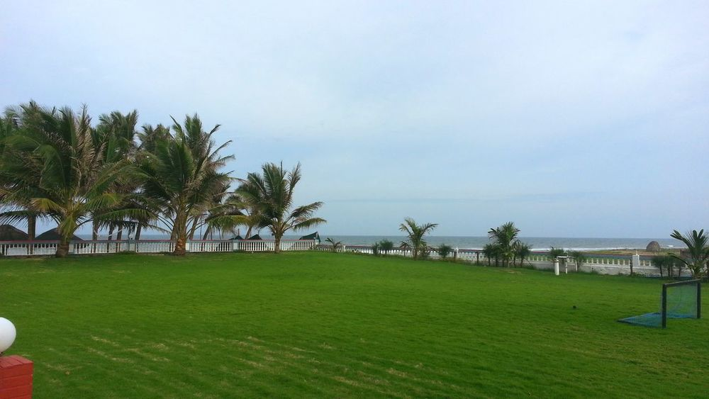 Grass Green Color Tree Sea Beach Landscape Horizon Over Water Mahabalipuram, India