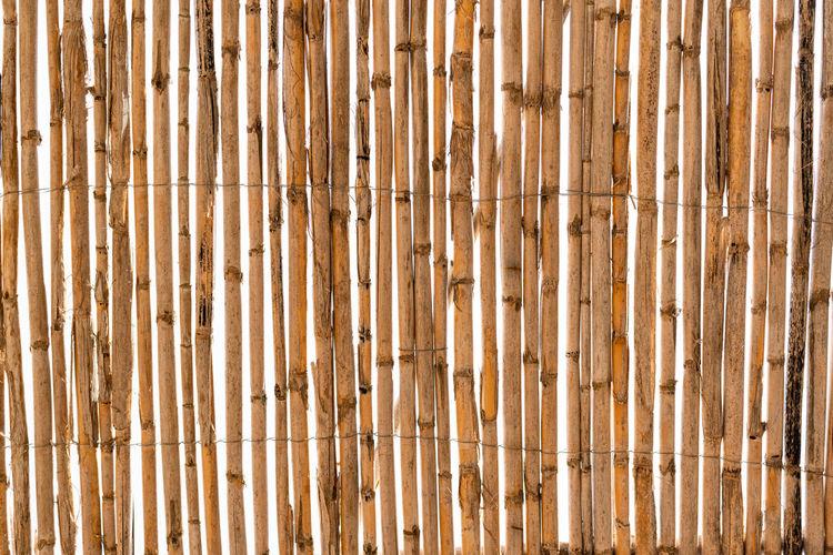 Full frame shot of bamboo wall
