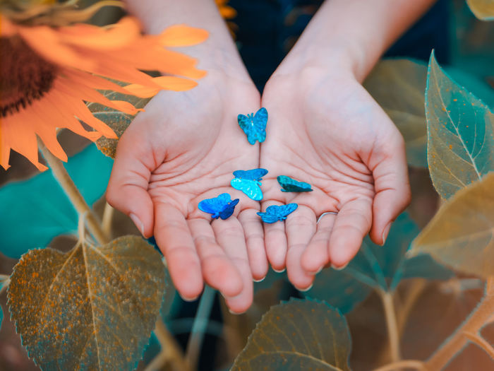 when you hand hold something for someone Human Hand Hand Holding Real People Close-up Day Finger Sunflower Butterfly Paper Papercraft Leaf Hands Green Color Yellow Vintage Vibrant Color Art And Craft Human Body Part Insect Great Views Popular Photos Feel The Journey