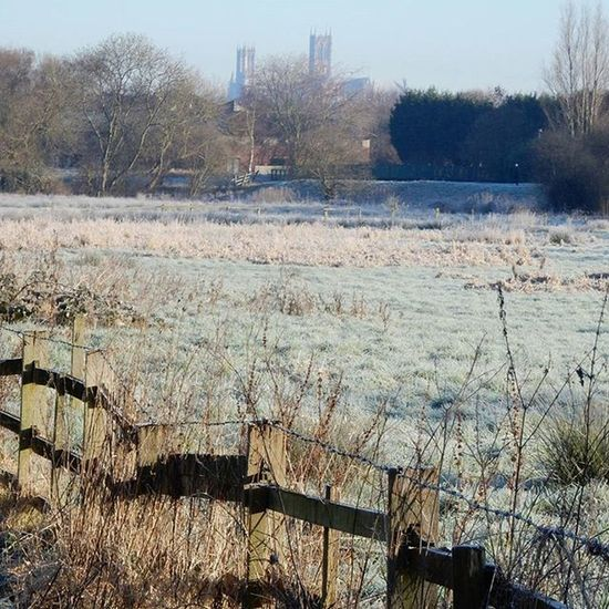A cold Frosty Morning view of Lincolncathedral on my Commutebybike along the Sustrans ncn93 www.facebook.com/melaniecycles Urbanphotography Photography Naturephotography Landscapephotography Urbancycling Naturecycling Cycling Bicycle Commutebybike Wintercycling Lincoln Lincolnshire Nikon_photography Nikons9900 Nature Cathedral Cyclelikeagirl Cyclepath View Viewfromthecyclepath lifethroughalens lifeonthecyclepath