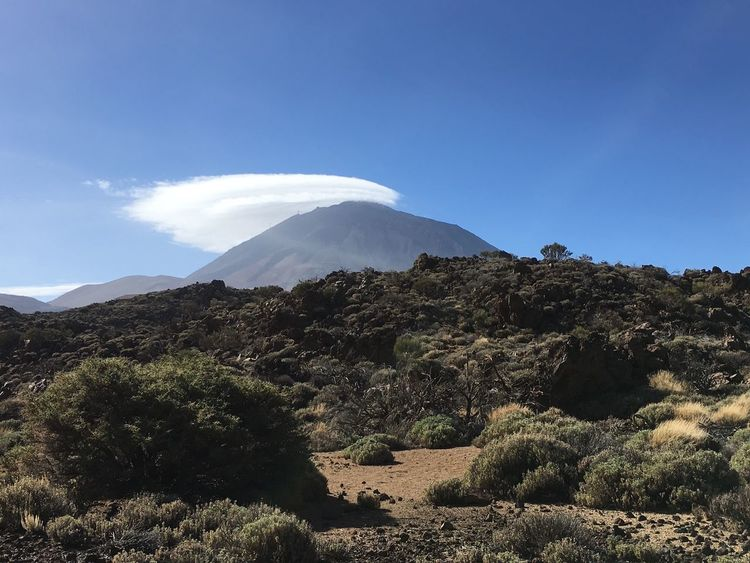 Mountain Beauty In Nature Nature Landscape Scenics Tranquility Day Tranquil Scene Rock - Object Outdoors No People Sunlight Sky Physical Geography Blue Tree Peak Clear Sky Vulcano Tenerife