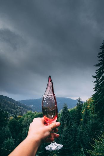 Cropped hand holding champagne flute against cloudy sky