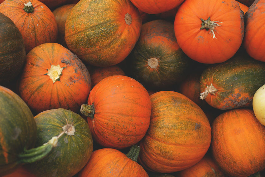 October - Agriculture Backgrounds Farmer Market Food Food And Drink For Sale Freshness Full Frame Gourd Halloween Market No People Orange Color Organic Pumpkin Raw Food Retail  Squash - Vegetable Stack Vegetable