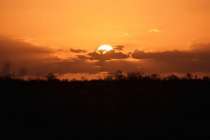 EyeEm Nature Lover Orange Sky Sun Going Down Beauty In Nature Cloud - Sky Field Scenics Sun Sunset Tranquil Scene