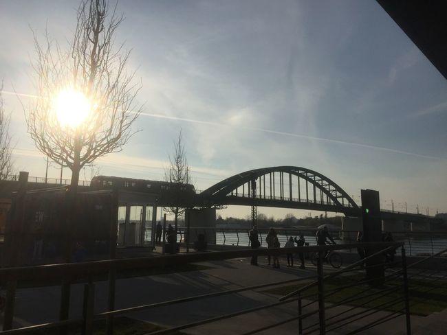 Take the sun in December. Serbian Photos Belgrade Built Structure Sun Sky Sunbeam City Tree City Life Bridge View Sava River