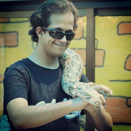 Reptiles Python Playing With The Animals Dare Me...