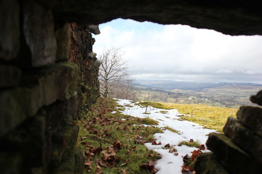 Yorkshire, January Aysgarth Dales Penn Hills Winter Yorkshire Dales Winter Beauty In Nature Hole In Wall Landscape Leaves Nature Outdoors Snow Snow On Hills Through Wall