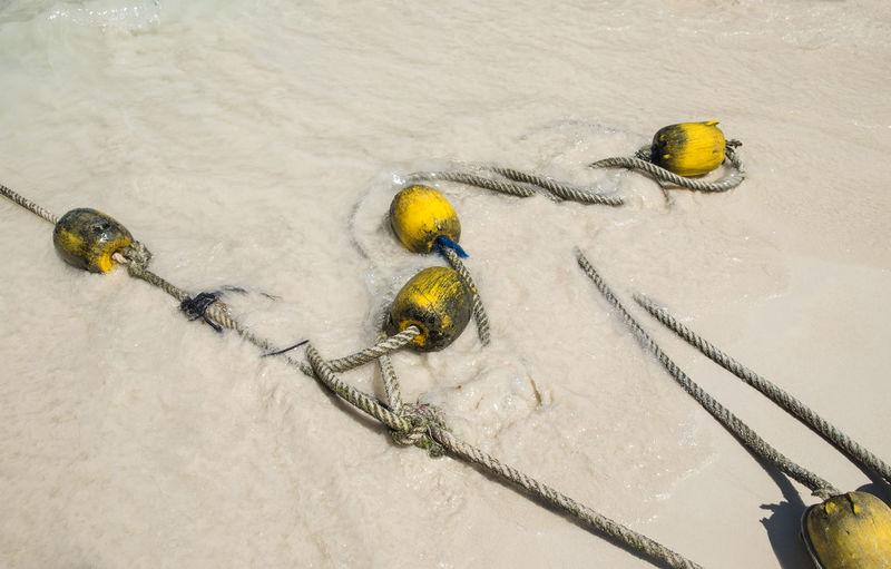Buoys and rope at beach