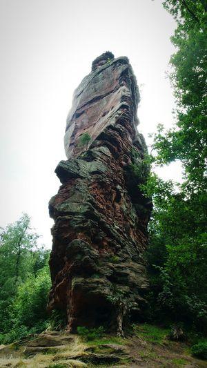 phenomenal!!!! huuuge rocks :) Rocks Stone Hikingadventures Full Frame Trifelsland Pfalz Forest Solitary Rock