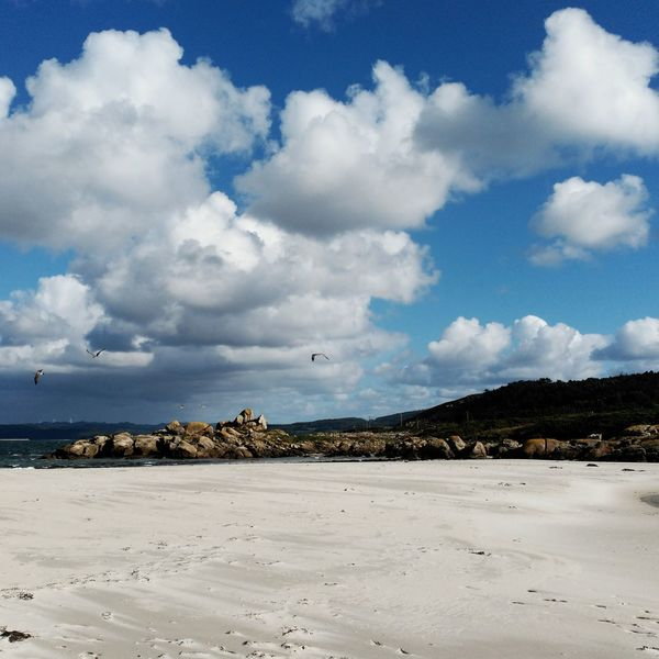 Cloud - Sky Beach No People Sea Nature Sand