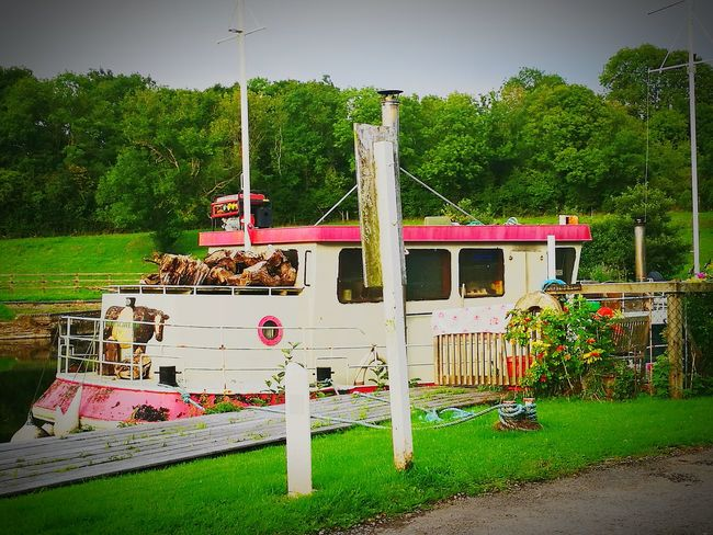 Tree No People Outdoors Grass Day Sky Boat River Cow Run-down Charm
