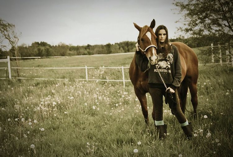 Horse Field Love ♥ Photoshoot First Eyeem Photo