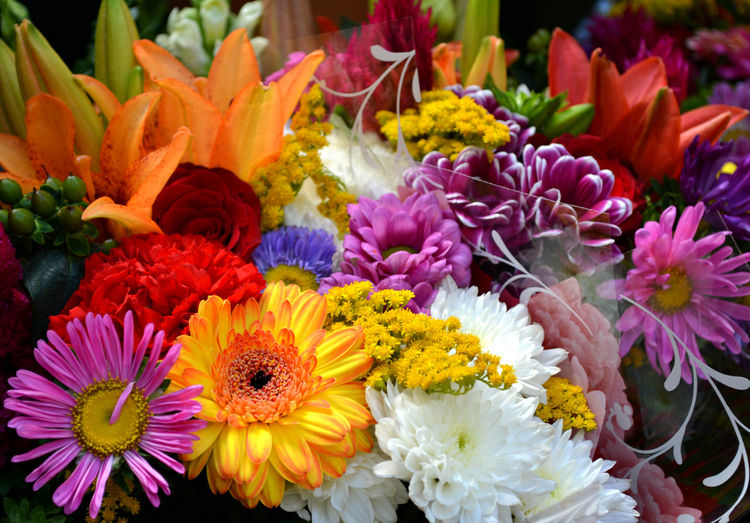 Close-up of colorful flowers at store