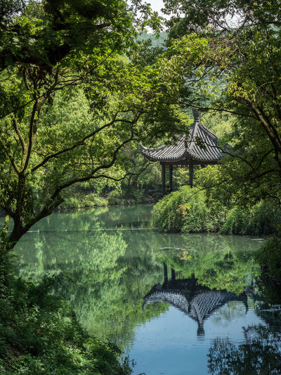 Scenic view of gazebo by lake amidst trees at park