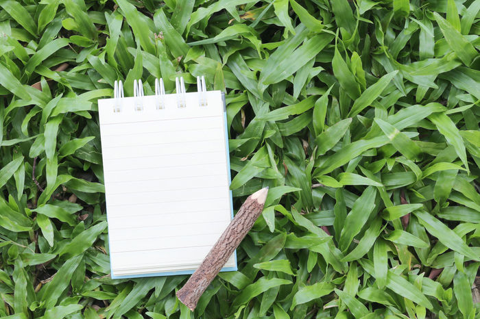 Empty note paper and wooden pencil on green lawn for note text,concept of education and equipment to learning. Green Color Plant Part Leaf Growth Blank No People Plant Paper Nature Close-up White Color Day Outdoors Copy Space Communication Beauty In Nature Still Life Wood - Material High Angle View Land Empty Note Paper Note Papers Wooden Pencils Green Lawns Note
