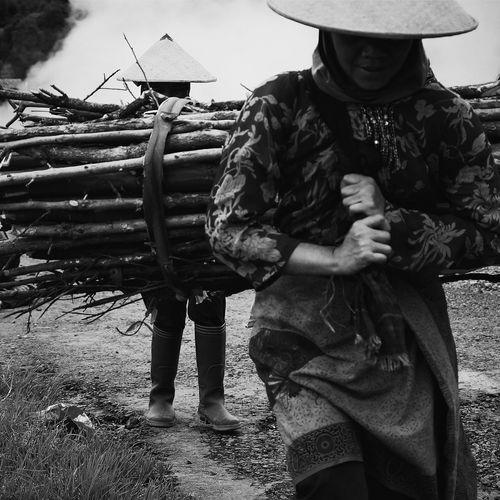 Women carrying firewood on field