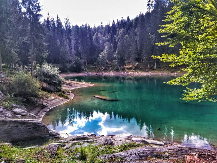 Switzerland Hiking Lake Nature Quiet Flims Protecting Where We Play Edge Of The World Alps Mountains Reflection Landscapes With WhiteWall The Great Outdoors - 2016 EyeEm Awards Lost In The Landscape