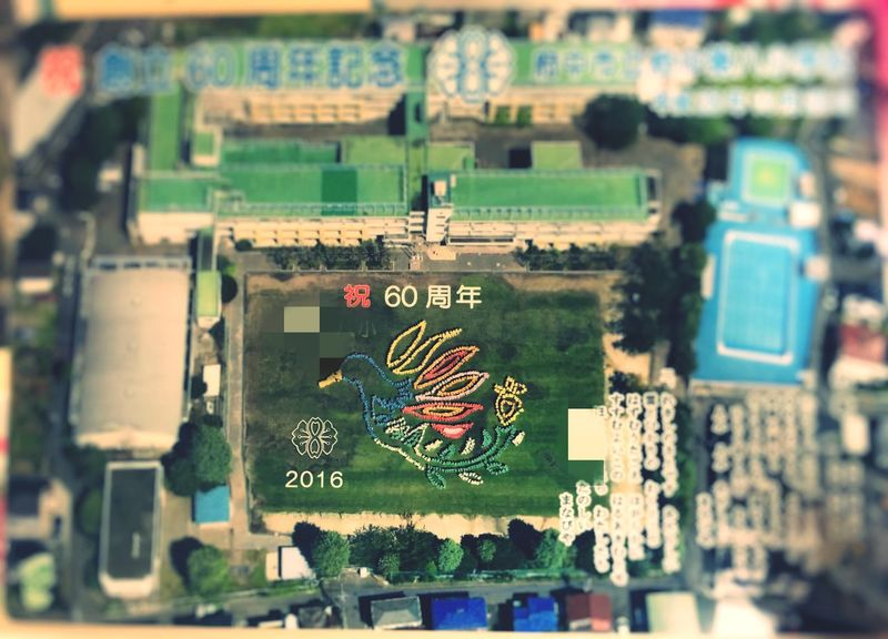 Anniversary The Establishment Of A School Event Photograph Nostalgic  Mydaugher Elementary School Aerial Photograph 航空写真 i was nostalgic.