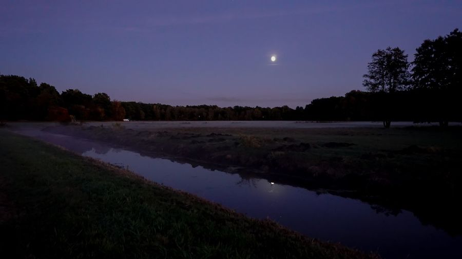 Good night ✨ Water Sky Plant Beauty In Nature Tree Scenics - Nature Tranquil Scene Tranquility Night Nature Lake Reflection Moon No People Star - Space Environment Outdoors Astronomy Space Full Moon
