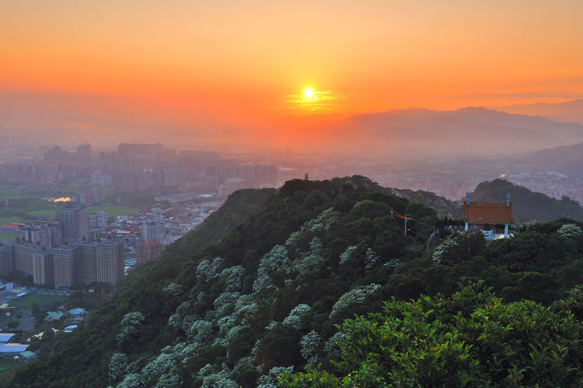 Early morning sun, full of warm hope. Beautiful City Taiwan's New Taipei City Fugueijiao Lighthouse Three Gorges Architecture Beauty In Nature Building Exterior Built Structure City Cityscape Dawn Day Growth Morning Fog Mountain Nature No People Outdoors Scenics Sky Sunrise Sunset Tree Tung Blossom Warm