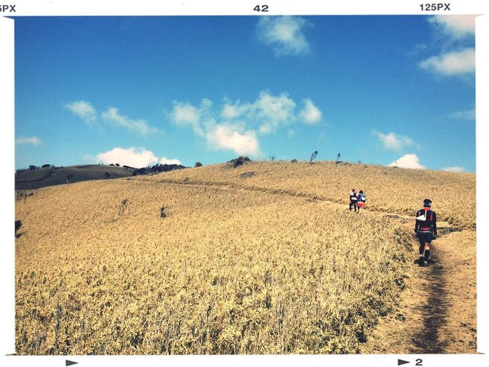 Trailrunning Taking Photos Izu ITJ