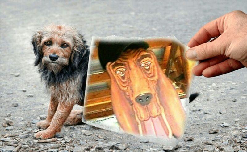 Dogs imagination wishful thinking big dog little dog big bark little bite