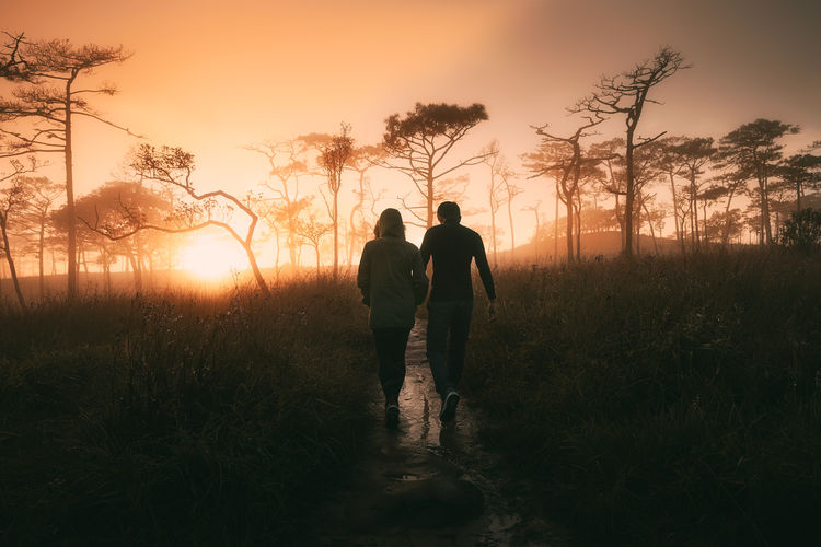 Rear view of couple walking on footpath amidst plants at sunset