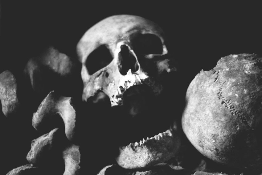 "Don Filter Skulls Bones At the catacombs in Paris. I named this guy ""Skullavich."""