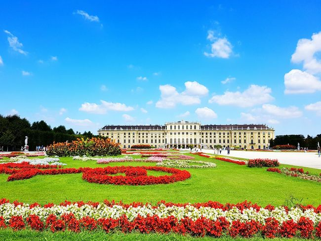 Sissi's Palace Sisi Austria Vienna Schönbrunn, Vienna Austria No People In Front Of Flower Plant Formal Garden Architecture
